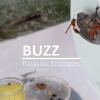 BUZZ Parasitic Ecologies